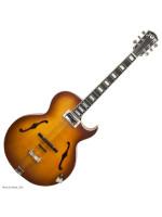 TON OBERKRAIN GUITAR TSB električna gitara