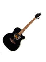 FLIGHT F-230C BLK akustična gitara
