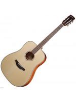 CRAFTER RD-600CE/N elektroakustična gitara s torbom