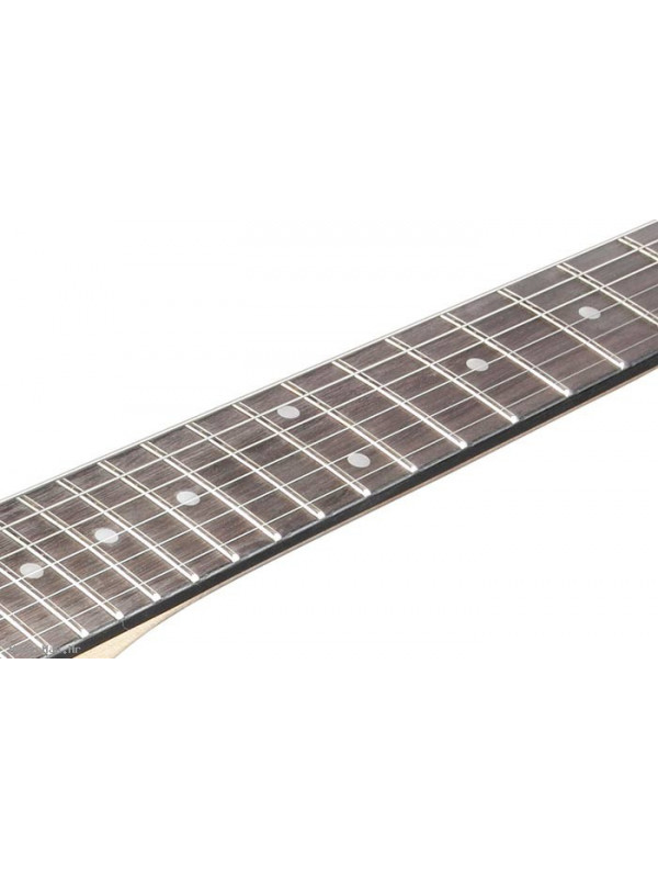 IBANEZ GRGR221PA-AQB električna gitara